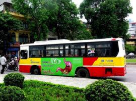 quảng cáo trên xe buýt cho Yumangel