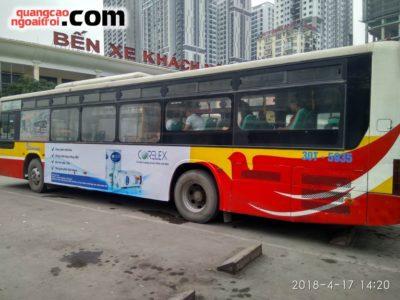 Corelex quảng cáo trên xe bus