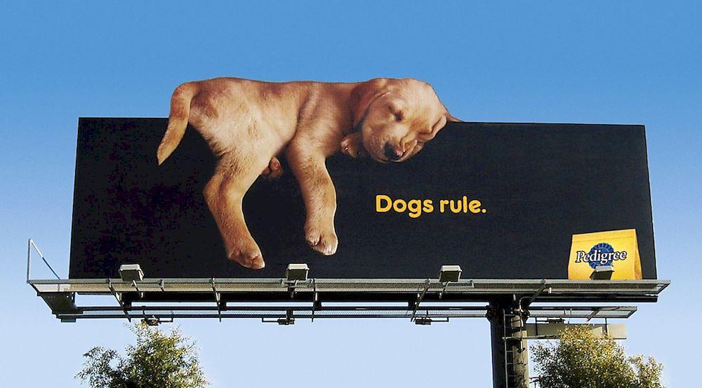 Billboard quảng cáo