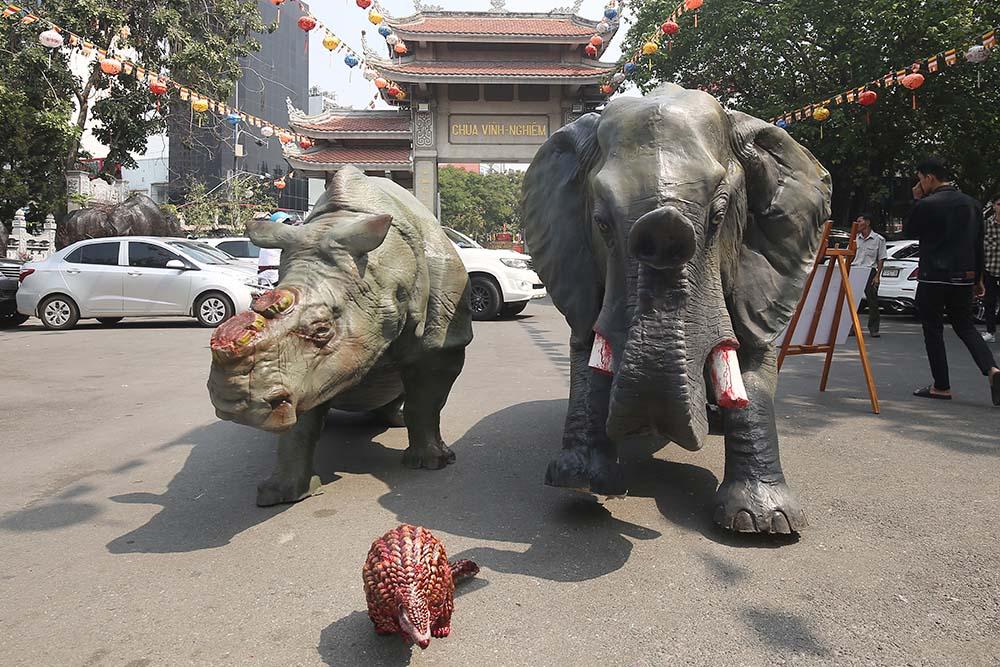 chiến dịch truyền thông bảo vệ động vật hoang dã