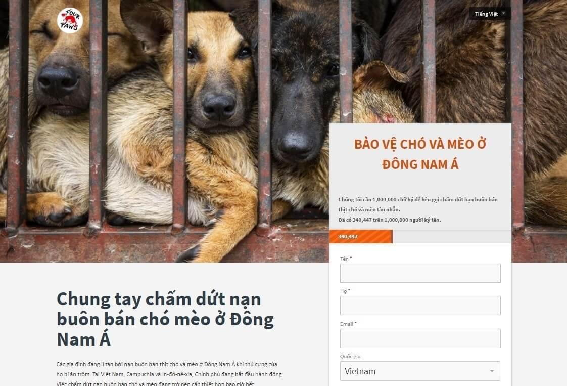 Chiến dịch Protect Millions lan tỏa thông điệp bảo vệ chó mèo ở Đông Nam Á