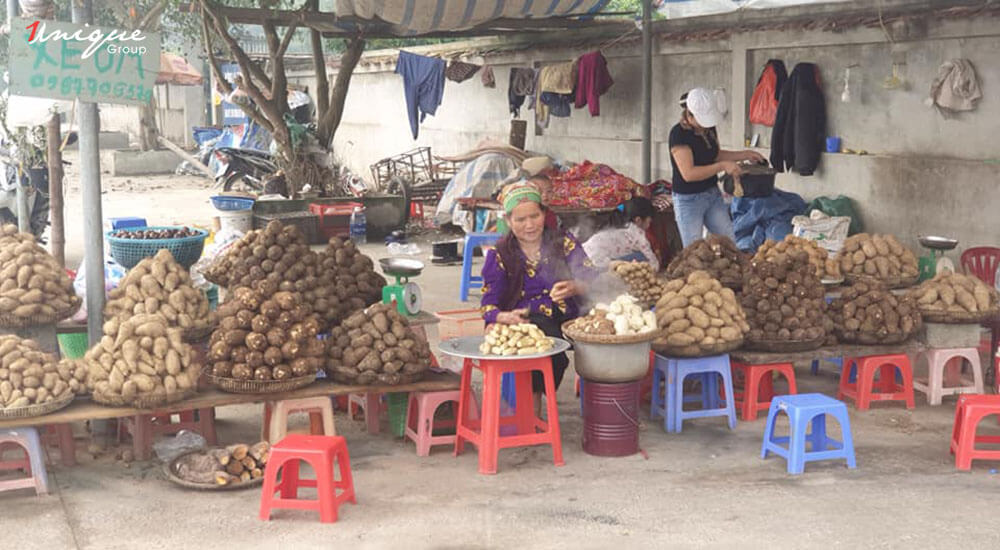 Unique du xuân chùa Hương
