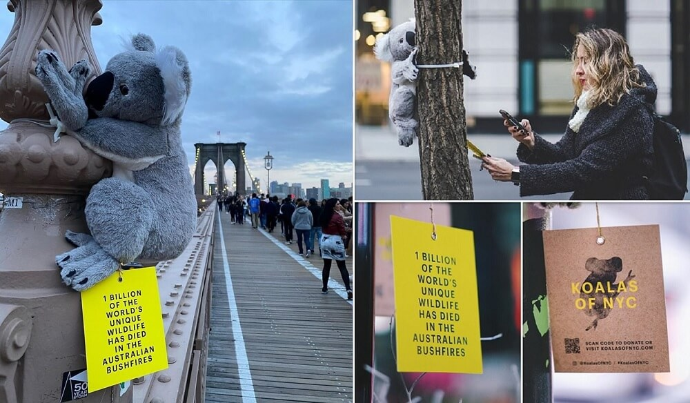 chiến dịch quảng cáo ngoài trời gây quỹ ủng hộ động vật hoang dã nước úc